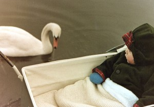 David with swan