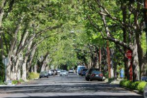 University Ave., Palo Alto