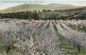 Old postcard of Santa Clara Valley